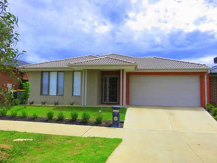 House - 162 Everard Road, M...