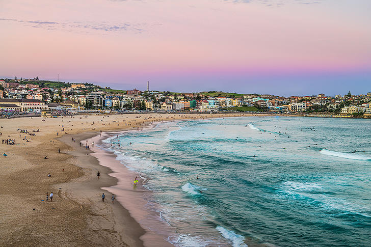 21/5 Campbell  Parade, Bondi Beach 2026, NSW Studio Photo