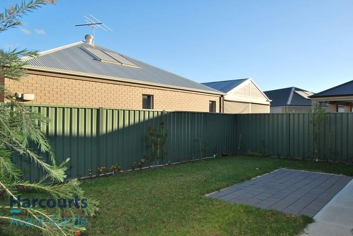 31 Hindmarsh Circuit, Mawson Lakes 5095, SA House Photo