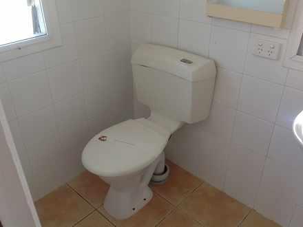 C39c7a140742b1023033d004 1453355582 24804 toilet 1554271876 thumbnail