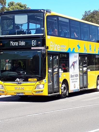 Govt bus to wynard   b1 1562322777 primary