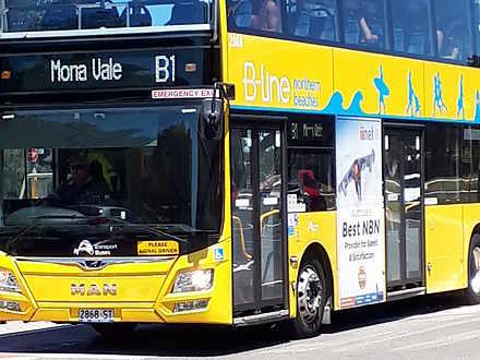Govt bus to wynard   b1 1562322777 thumbnail