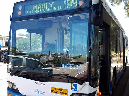 Govt bus to manly   199. 1562322977 thumbnail