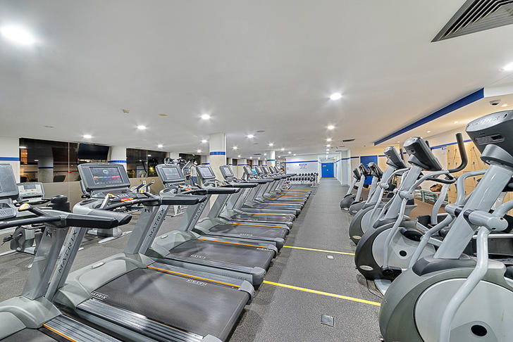 Gym 1562388476 primary