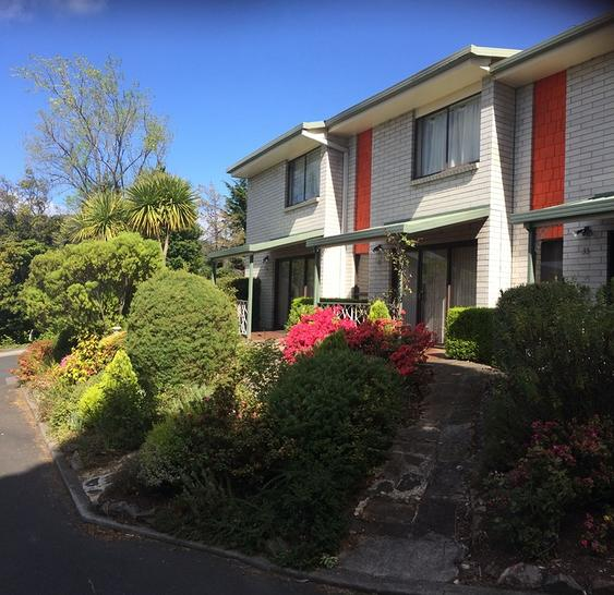 33/1 Davey Place, South Hobart 7004, TAS Townhouse Photo