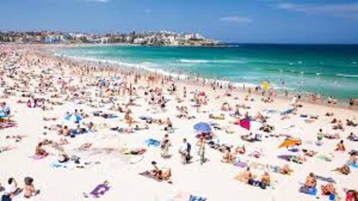 9/240 Campbell Parade, Bondi Beach 2026, NSW Studio Photo
