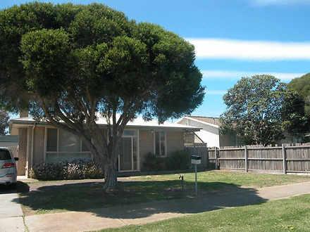 House - 61 Camellia Crescen...