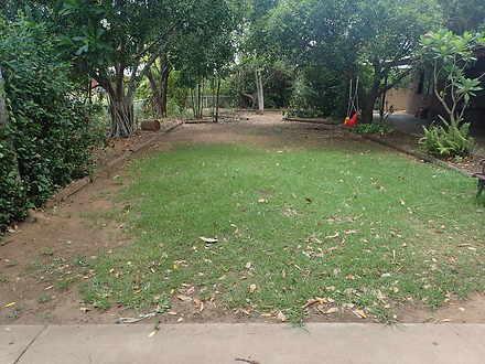 1986336551cbeed889a66c90 29 eucalyptus front yard 5174 5ddb7d4eef863 1585898856 thumbnail