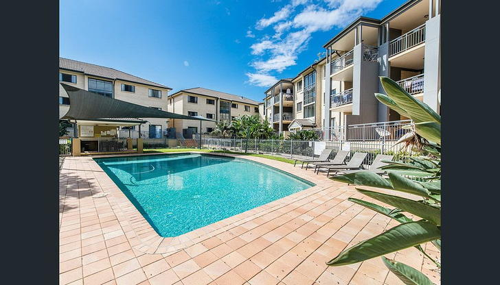 67/300 Sir Fred Schonell Drive, St Lucia 4067, QLD Unit Photo