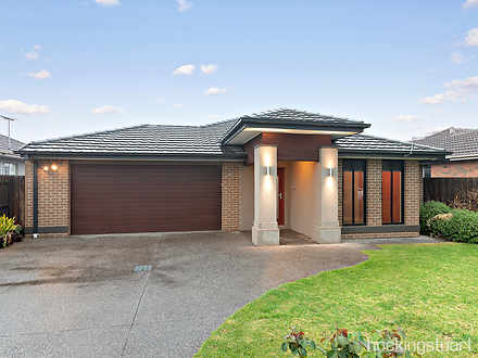 House - 31 Begonia Avenue, ...