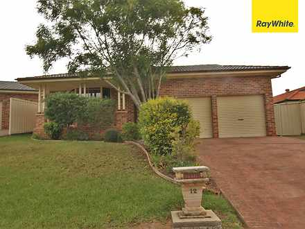 House - 12 Irwin Court, Nar...