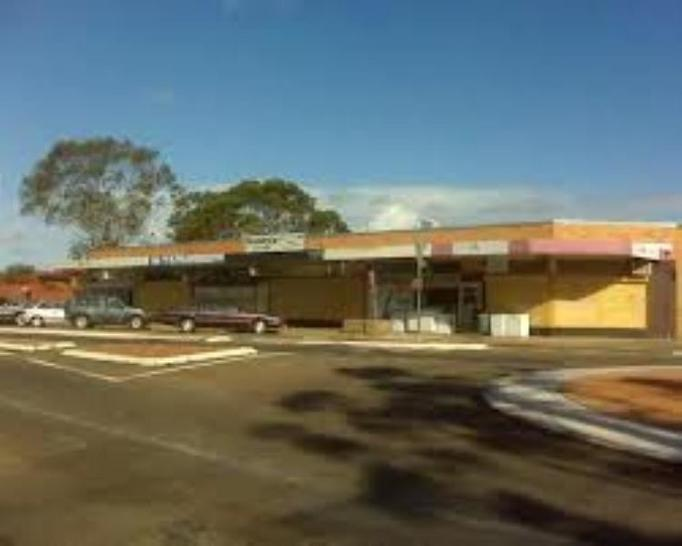 166-168 Waminda Avenue, Campbelltown 2560, NSW House Photo