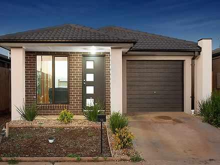 House - 14 Abbott Street, M...