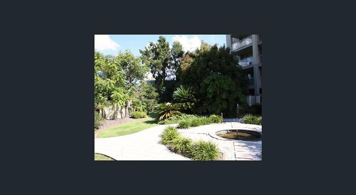 76decbba3cdf6eb3c32ce5d2 890 1 common garden 2 1585267714 primary