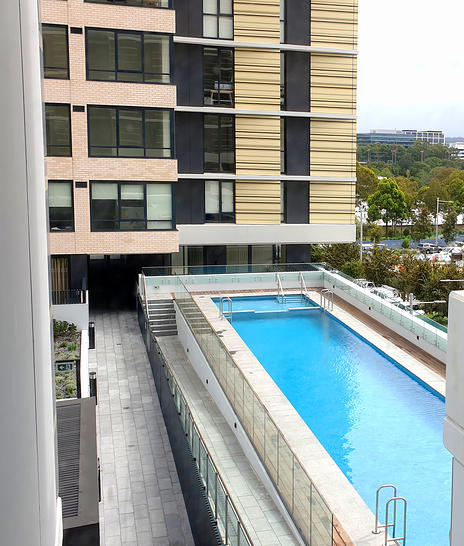 Lachlan line swimming pool 1585292913 primary