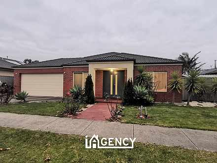 House - 11 Tanner Avenue, C...