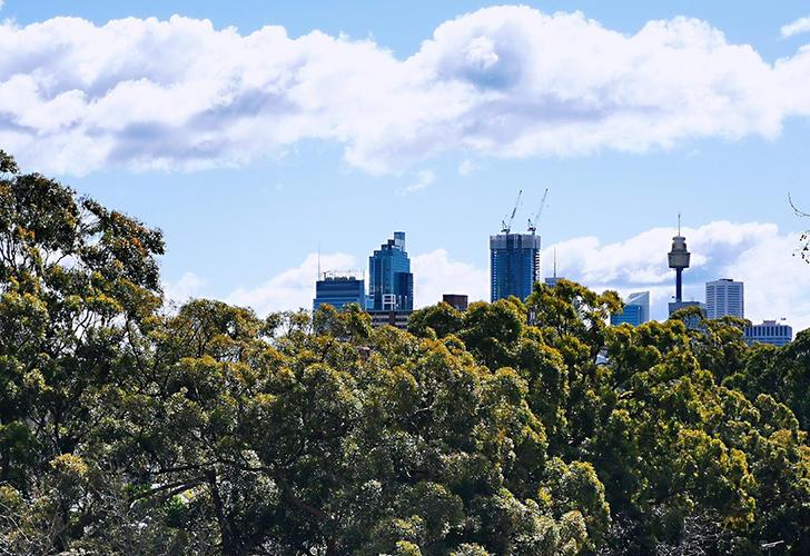 4008/859 Bourke Street, Waterloo 2017, NSW Apartment Photo