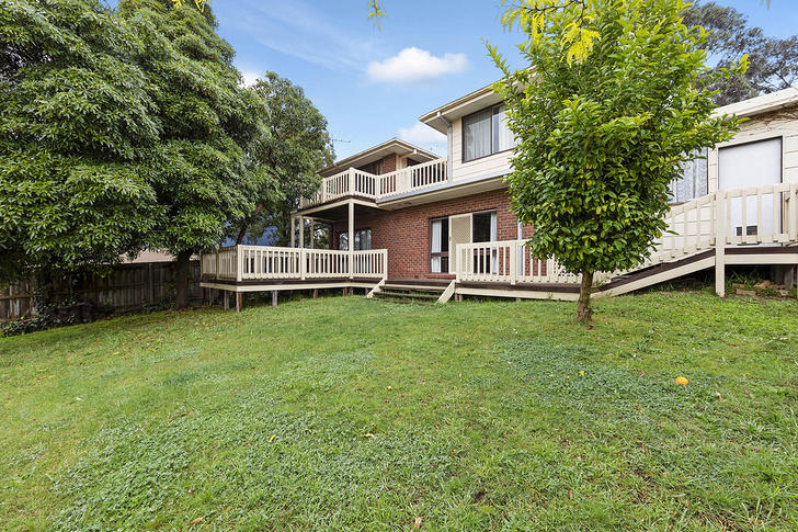 24 Homestead Drive, Wheelers Hill 3150, VIC House Photo
