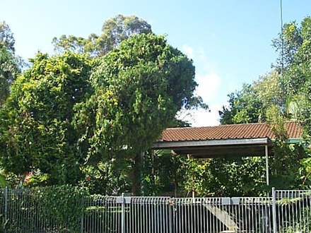12 Woodash Street, Kingston 4114, QLD House Photo