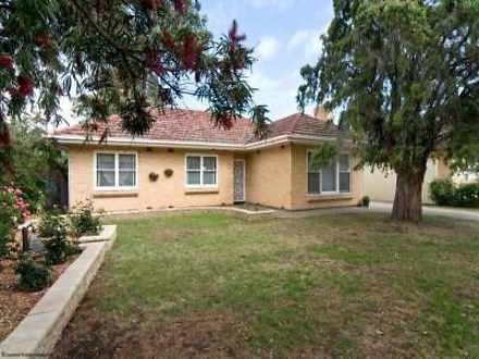 40 Warwick Street, Kurralta Park 5037, SA House Photo