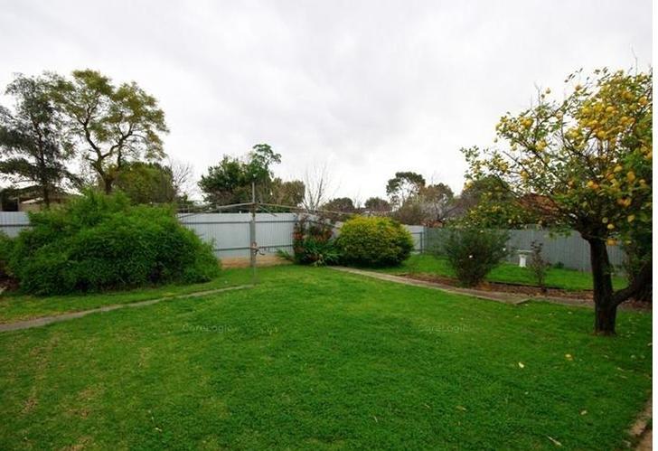 49 Briant Road, Magill 5072, SA House Photo