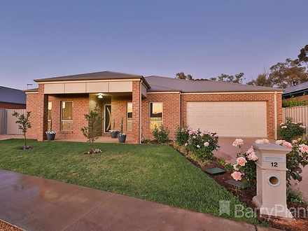 12 Central Park Drive, Mildura 3500, VIC House Photo
