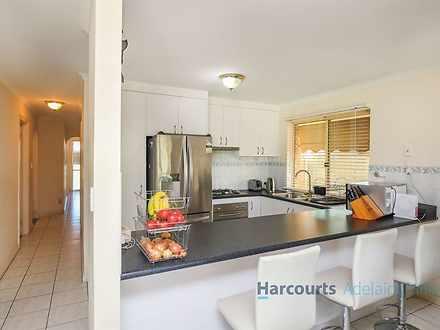 39 Homestead Avenue, Walkley Heights 5098, SA House Photo