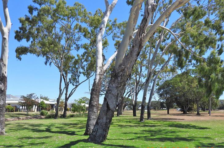 17 Darter Street, Oonoonba 4811, QLD House Photo