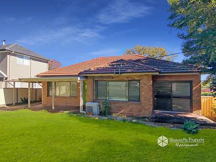 4 Ellerslie Road, Adamstown Heights 2289, NSW House Photo