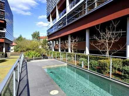 203A/264 Anzac Parade, Kensington 2033, NSW Apartment Photo