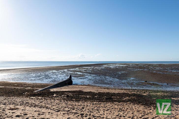 11 Reef Point Esplanade, Scarborough 4020, QLD House Photo