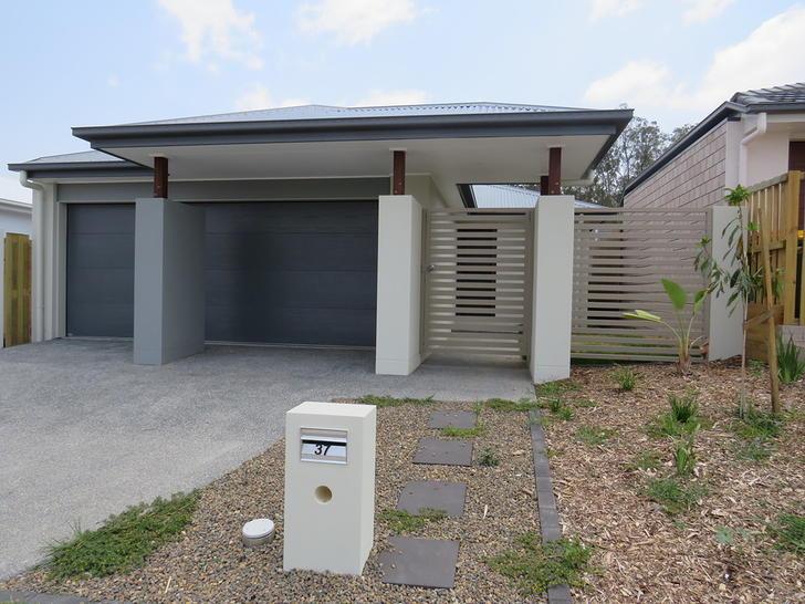 37 Falco Drive, Bahrs Scrub 4207, QLD House Photo