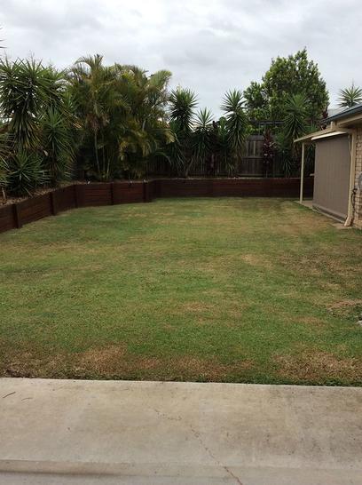 11 Foreman Court, Collingwood Park 4301, QLD House Photo