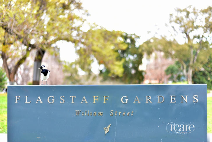 103/455 Elizabeth Street, Melbourne 3000, VIC Apartment Photo