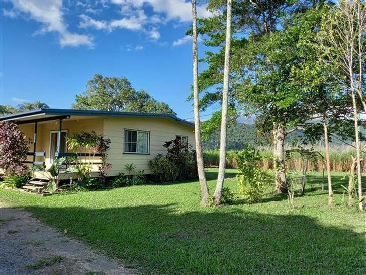 23 Nebbia Access, Green Hill 4865, QLD House Photo