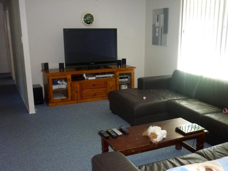 28 Royal Palm Drive, Buderim 4556, QLD House Photo