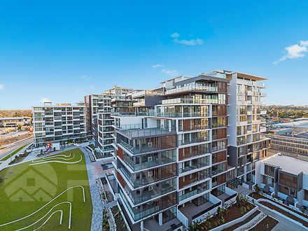 305/15 Garrigarrang Avenue, Kogarah 2217, NSW Apartment Photo