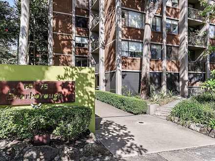 12/69 Cook Road, Centennial Park 2021, NSW Apartment Photo