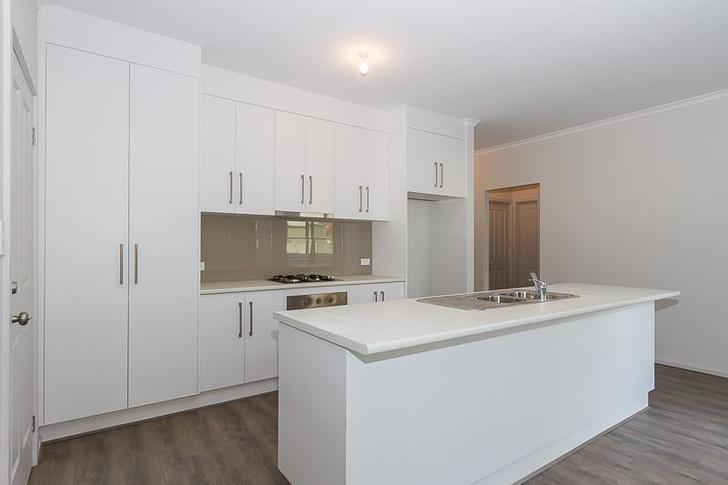 2B Sunshine Avenue, Warradale 5046, SA House Photo