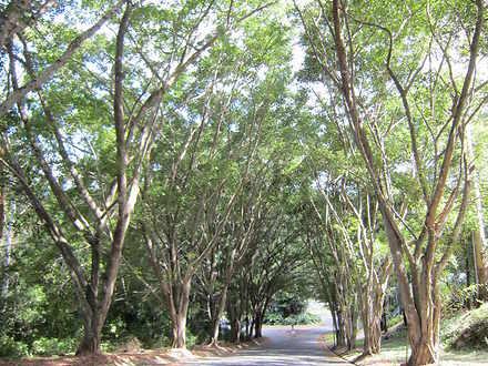 11 Turnipwood Drive, Buderim 4556, QLD House Photo