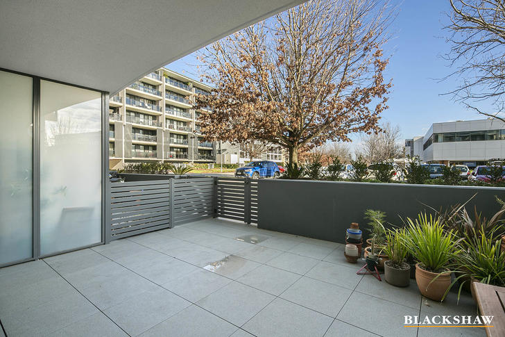 7/74 Leichhardt Street, Griffith 2603, ACT Apartment Photo