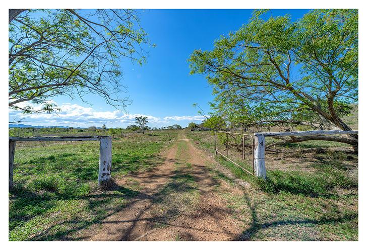11 Kelehers Road, Milman 4702, QLD House Photo