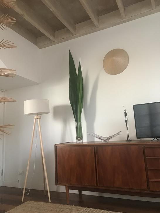 6 Thames  Street, Balmain 2041, NSW Apartment Photo