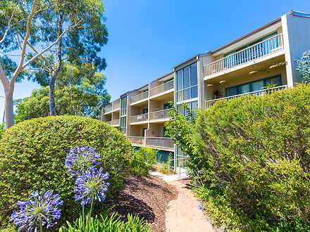 72/53 Mcmillan Crescent, Griffith 2603, ACT Apartment Photo