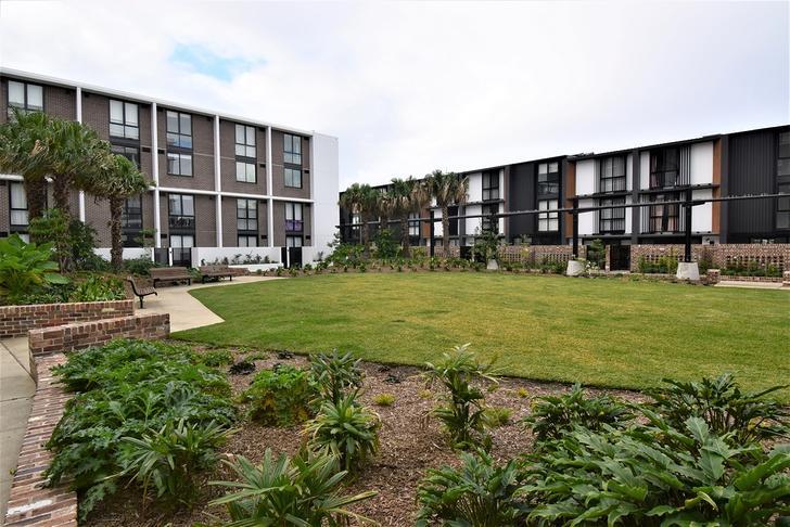 3405/50 Pemberton Street, Botany 2019, NSW Apartment Photo