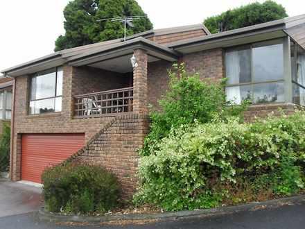 Townhouse - 1/312 Davey Str...