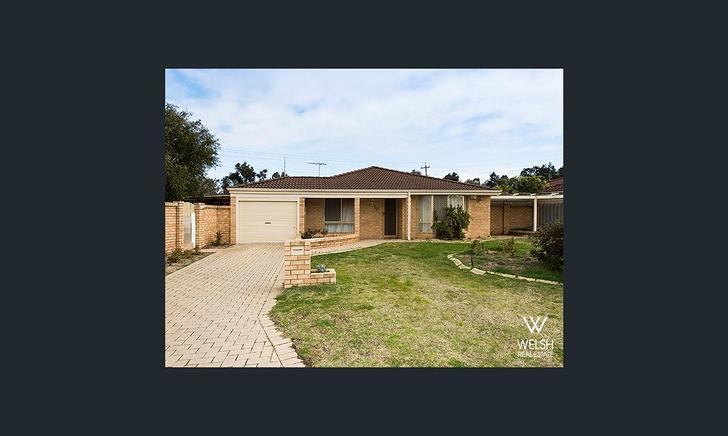House - 20 Everlasting Gard...