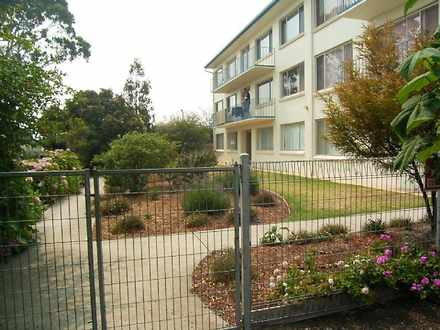Apartment - 6/ 9 Warley Ave...