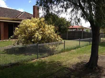 House - 255 Nicholson Stree...