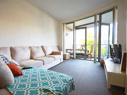 Apartment - 207/7 Wills Ave...
